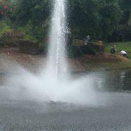 Amenity Center Fountain